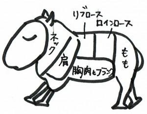 羊肉の部位図